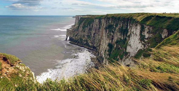 Bempton Cliffs RSPB Nature Reserve