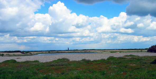 Dungeness RSPB Nature Reserve