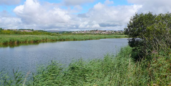 Radipole Lake RSPB Nature Reserve