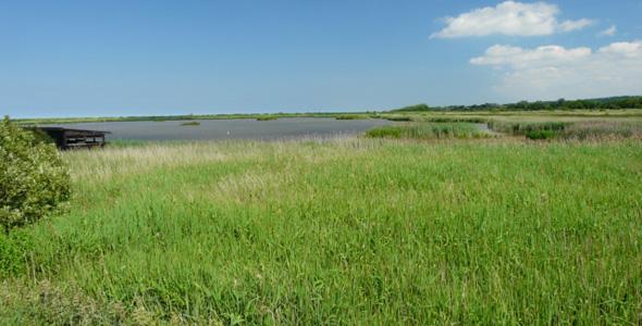 Titchwell Marsh RSPB Nature Reserve